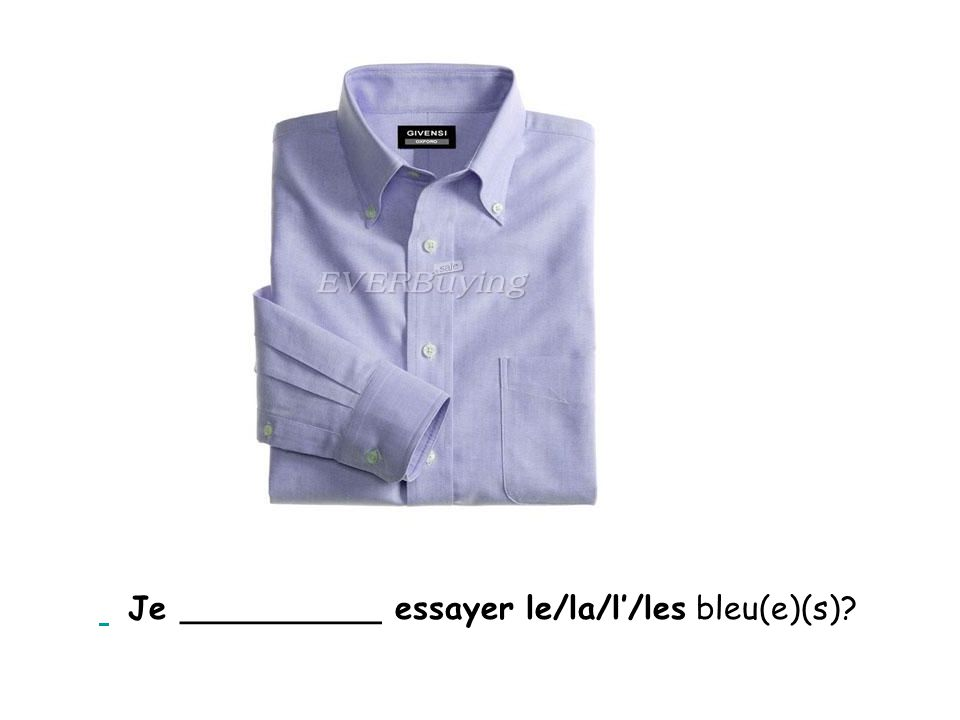 Je __________ essayer le/la/l'/les bleu(e)(s)?