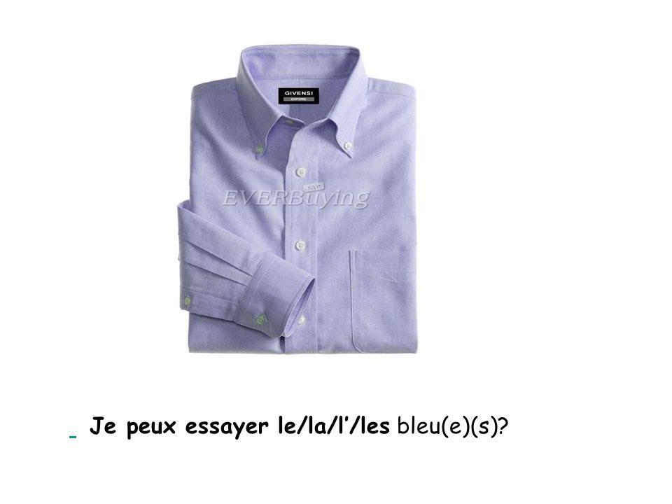 Je peux essayer le/la/l'/les bleu(e)(s)?