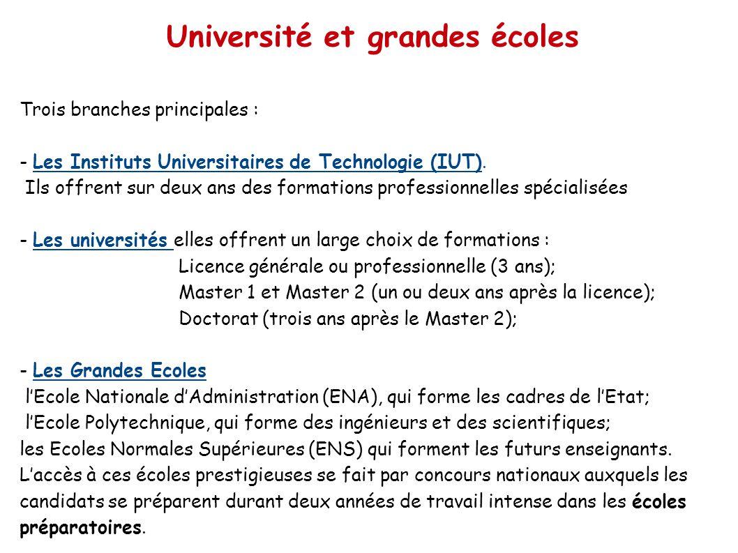 Trois branches principales : - Les Instituts Universitaires de Technologie (IUT). Ils offrent sur deux ans des formations professionnelles spécialisée