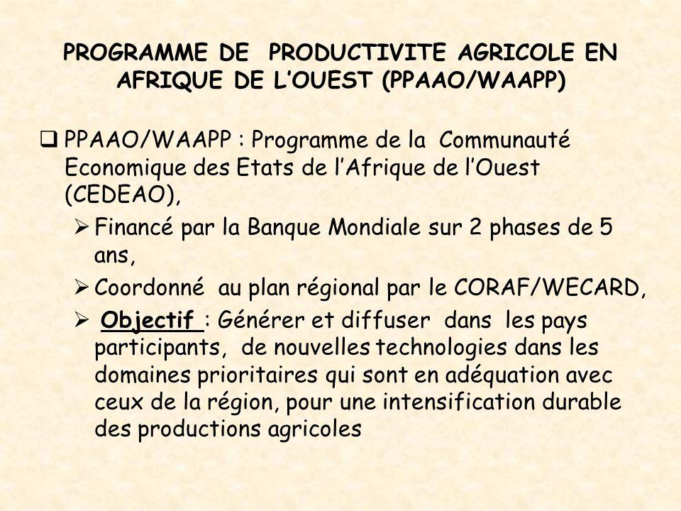 PROGRAMME DE PRODUCTIVITE AGRICOLE EN AFRIQUE DE L'OUEST (PPAAO/WAAPP)  PPAAO/WAAPP : Programme de la Communauté Economique des Etats de l'Afrique de