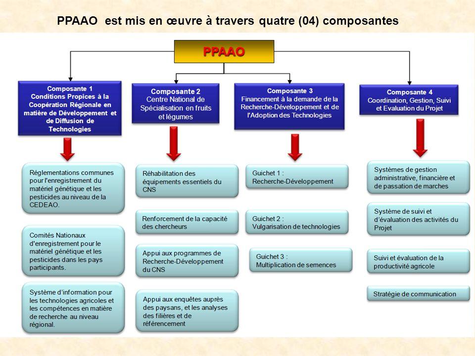  PPAAO Burkina Entrée en vigueur de la première phase : 25 juillet 2011 pour une durée de 5 ans  Placé sous la tutelle technique du Ministère de l'Agriculture et de la sécurité Alimentaire (MASA)  Coordination Nationale est adossée à la Coordination Nationale du Programme d'Appui aux Filières Agro-Sylvo-Pastorales (PAFASP)  PTBA validé par un Comité National de Pilotage