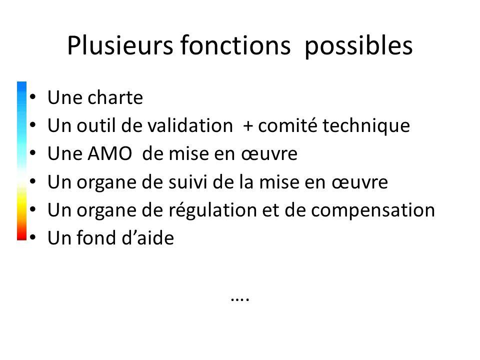 Plusieurs fonctions possibles Une charte Un outil de validation + comité technique Une AMO de mise en œuvre Un organe de suivi de la mise en œuvre Un organe de régulation et de compensation Un fond d'aide ….