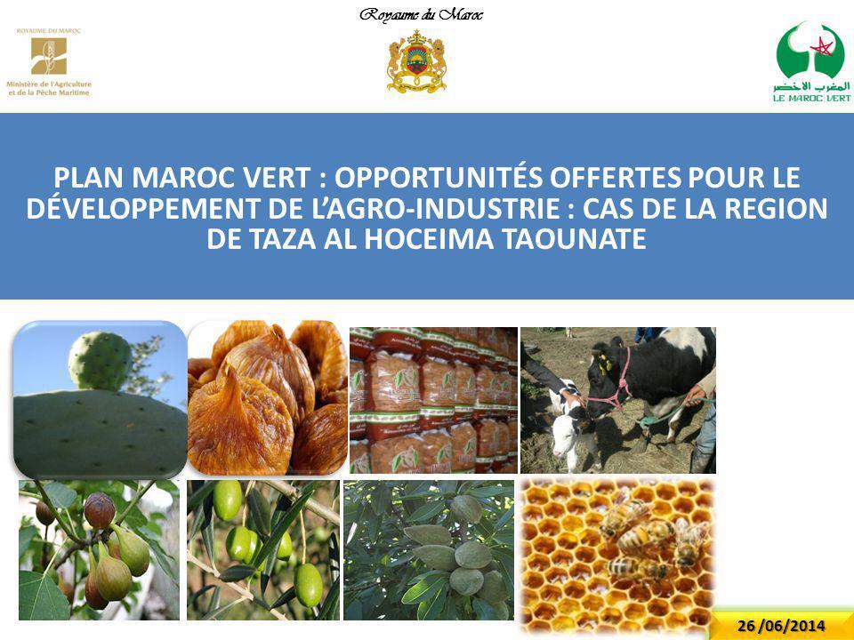PLAN MAROC VERT : OPPORTUNITÉS OFFERTES POUR LE DÉVELOPPEMENT DE L'AGRO-INDUSTRIE : CAS DE LA REGION DE TAZA AL HOCEIMA TAOUNATE Royaume du Maroc 26 /06/2014
