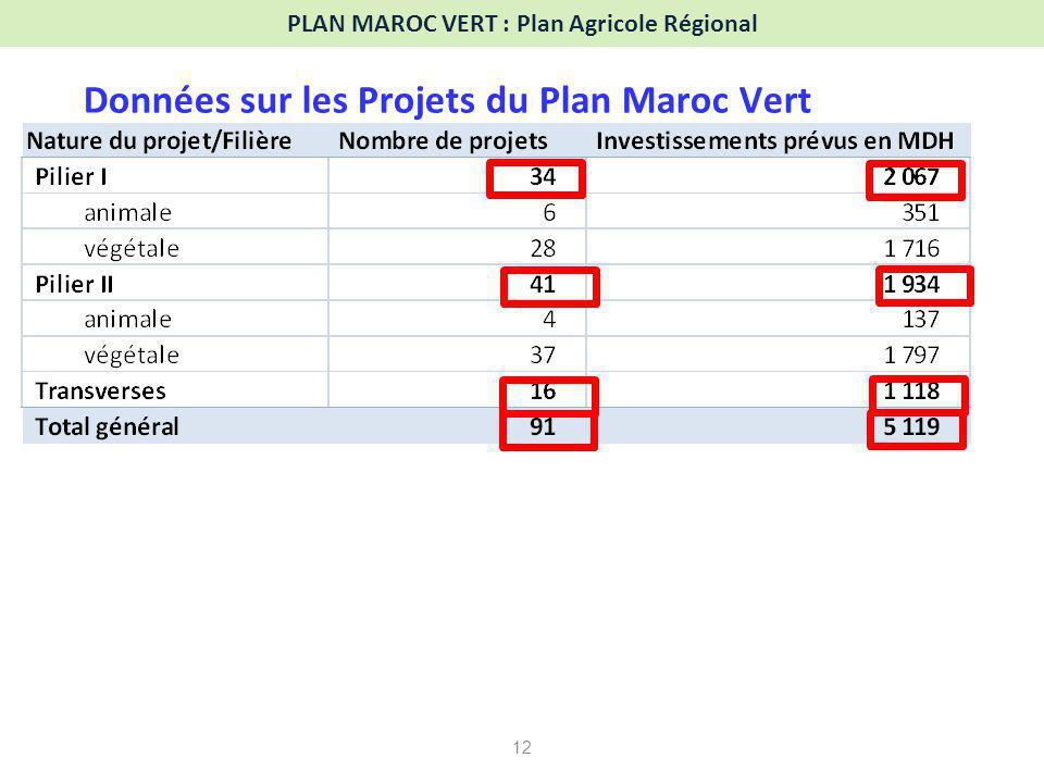 12 PLAN MAROC VERT : Plan Agricole Régional Données sur les Projets du Plan Maroc Vert