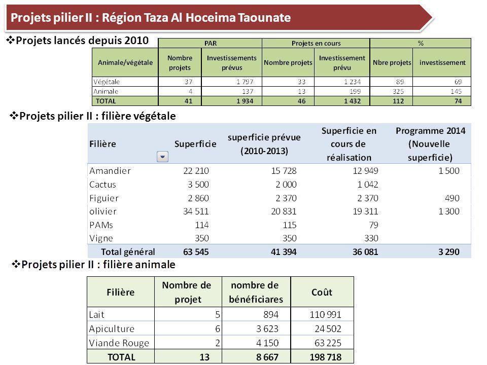 13  Projets pilier II : filière végétale Projets pilier II : Région Taza Al Hoceima Taounate  Projets lancés depuis 2010