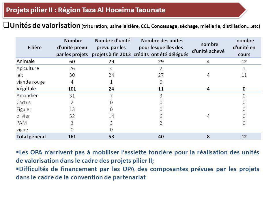 14 Projets pilier II : Région Taza Al Hoceima Taounate  Unités de valorisation (trituration, usine laitière, CCL, Concassage, séchage, miellerie, distillation,…etc)  Les OPA n'arrivent pas à mobiliser l'assiette foncière pour la réalisation des unités de valorisation dans le cadre des projets pilier II;  Difficultés de financement par les OPA des composantes prévues par les projets dans le cadre de la convention de partenariat
