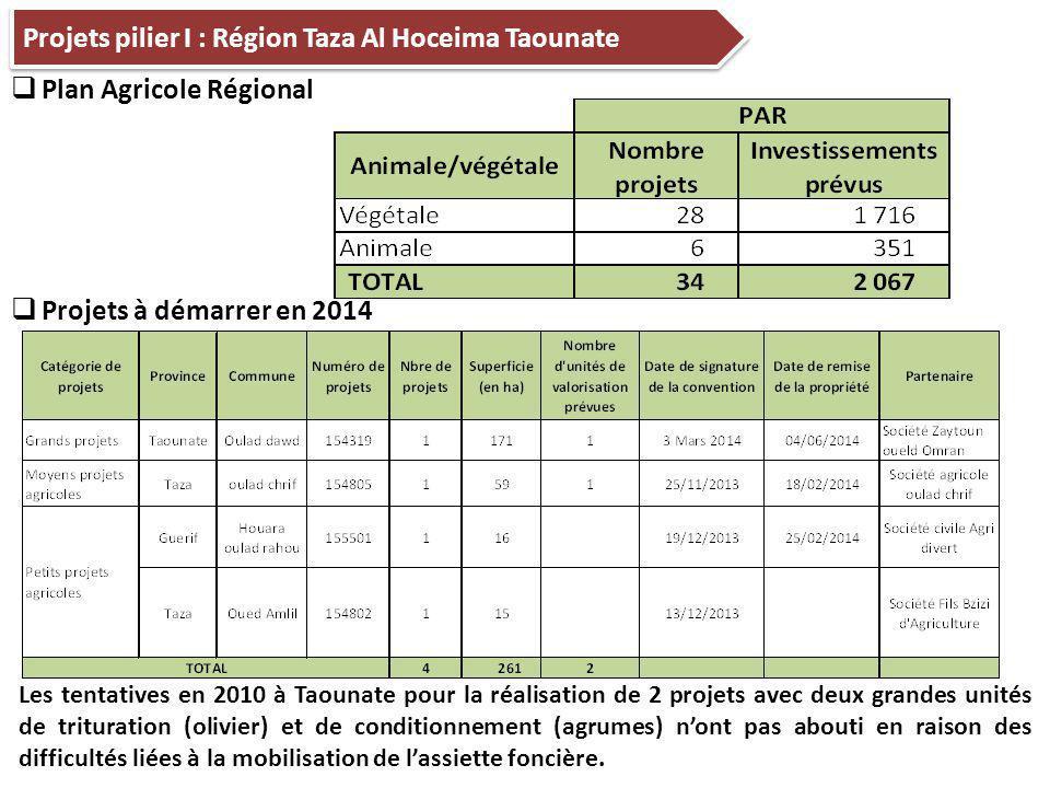 Projets pilier I : Région Taza Al Hoceima Taounate  Plan Agricole Régional Les tentatives en 2010 à Taounate pour la réalisation de 2 projets avec deux grandes unités de trituration (olivier) et de conditionnement (agrumes) n'ont pas abouti en raison des difficultés liées à la mobilisation de l'assiette foncière.