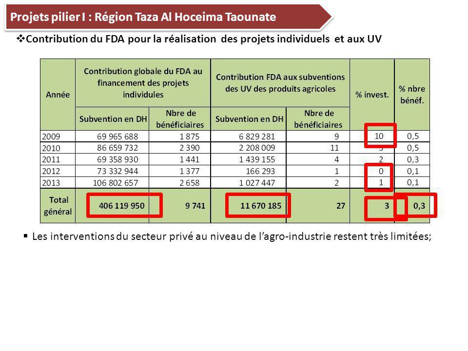 Projets pilier I : Région Taza Al Hoceima Taounate  Contribution du FDA pour la réalisation des projets individuels et aux UV  Les interventions du secteur privé au niveau de l'agro-industrie restent très limitées;