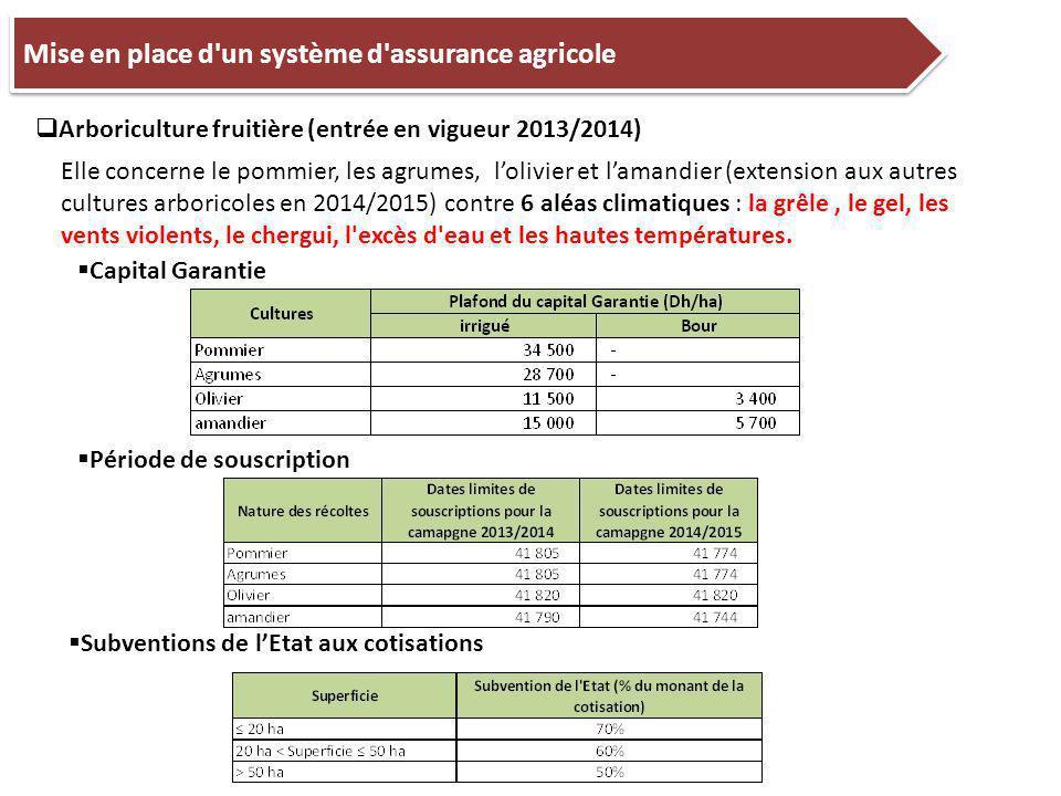 Mise en place d un système d assurance agricole  Arboriculture fruitière (entrée en vigueur 2013/2014) Elle concerne le pommier, les agrumes, l'olivier et l'amandier (extension aux autres cultures arboricoles en 2014/2015) contre 6 aléas climatiques : la grêle, le gel, les vents violents, le chergui, l excès d eau et les hautes températures.