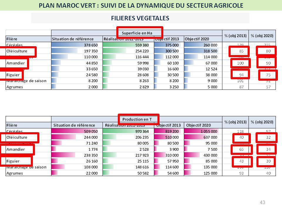 43 PLAN MAROC VERT : SUIVI DE LA DYNAMIQUE DU SECTEUR AGRICOLE FILIERES VEGETALES