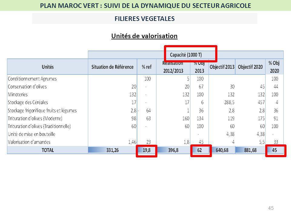 45 PLAN MAROC VERT : SUIVI DE LA DYNAMIQUE DU SECTEUR AGRICOLE FILIERES VEGETALES Unités de valorisation
