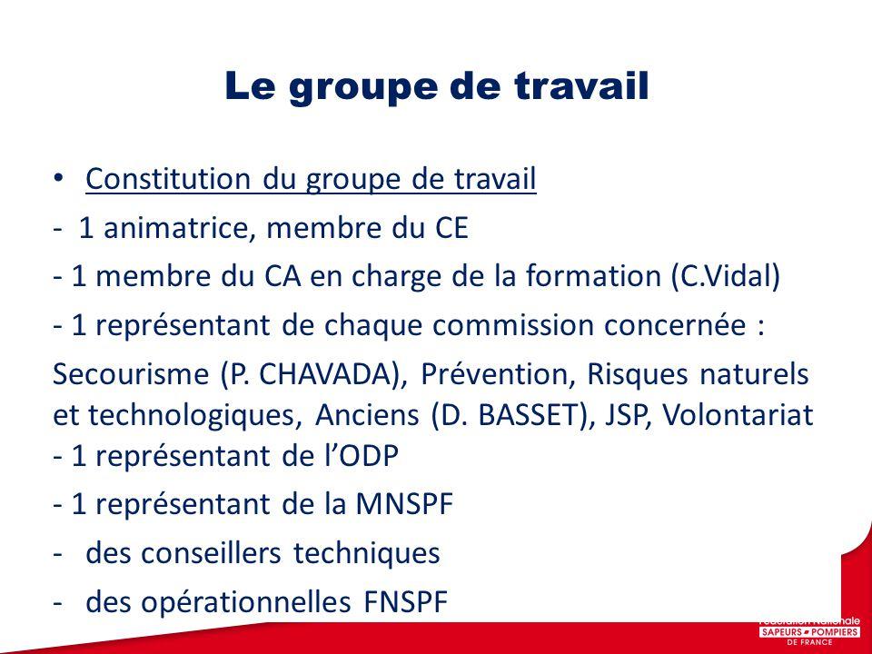 Constitution du groupe de travail - 1 animatrice, membre du CE - 1 membre du CA en charge de la formation (C.Vidal) - 1 représentant de chaque commission concernée : Secourisme (P.