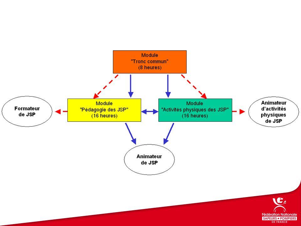 Module Tronc commun Dispositions réglementaires relatives aux jeunes sapeurs pompiers Gestion de groupe Sécurité physique et morale des mineurs Module Activités physiques des JSP Conditions physiques favorables à l'entraînement physique Programmation des activités physiques Autonomie du JSP Module Pédagogie des JSP Plan de formation Conditions d'apprentissage des pré adolescents et adolescents Techniques et outils pédagogiques Conception d'une séquence de formation