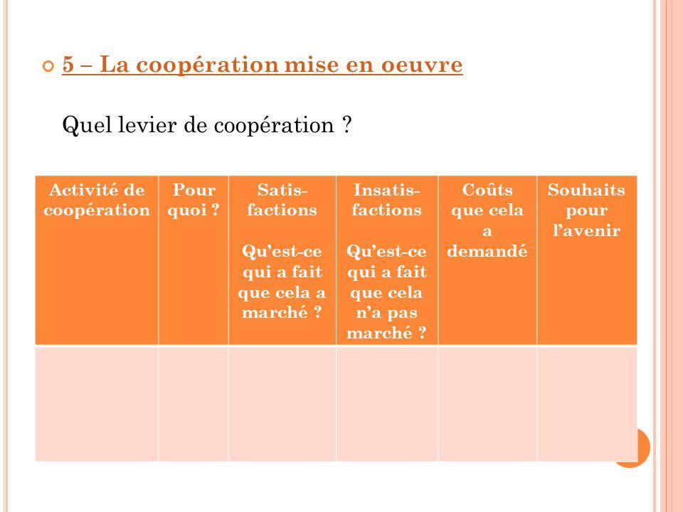 5 – La coopération mise en oeuvre Quel levier de coopération ? - Activité de coopération Pour quoi ? Satis- factions Qu'est-ce qui a fait que cela a m