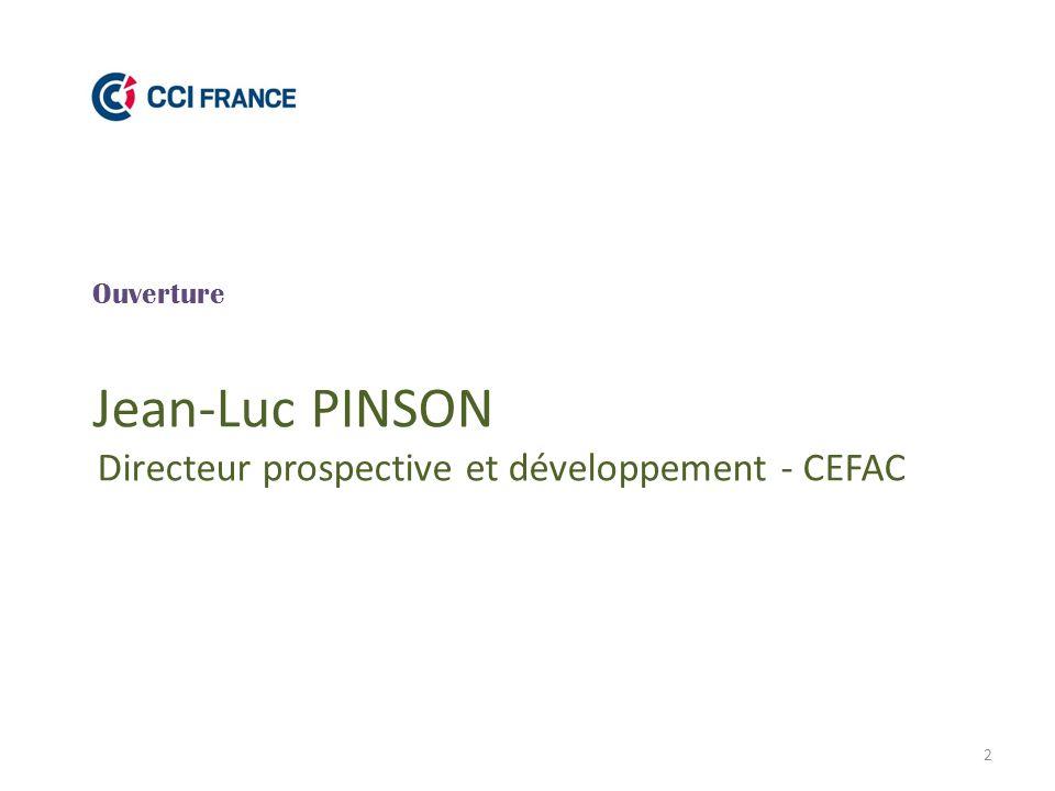2 Ouverture Jean-Luc PINSON Directeur prospective et développement - CEFAC