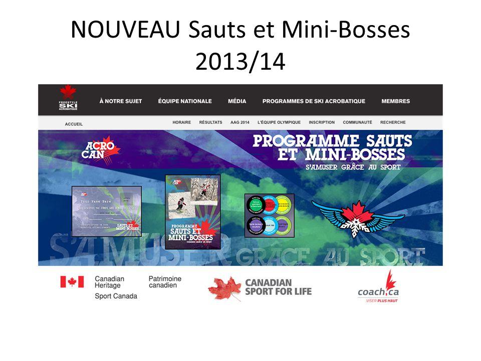 NOUVEAU Sauts et Mini-Bosses 2013/14