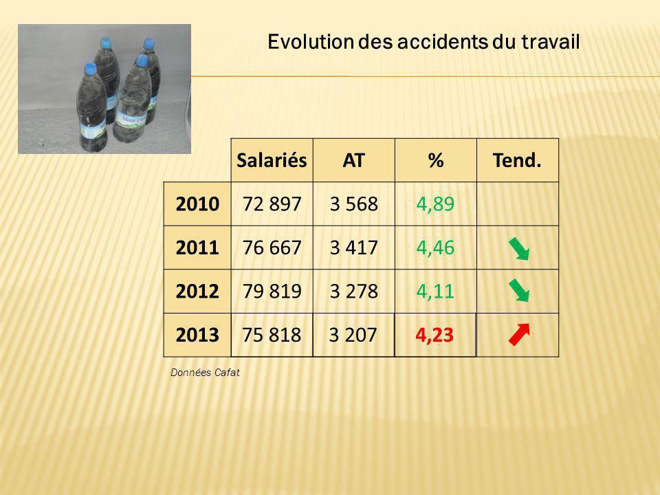 SalariésAT%Tend. 201072 8973 5684,89 201176 6673 4174,46 201279 8193 2784,11 2013 75 8183 2074,23 Evolution des accidents du travail Données Cafat