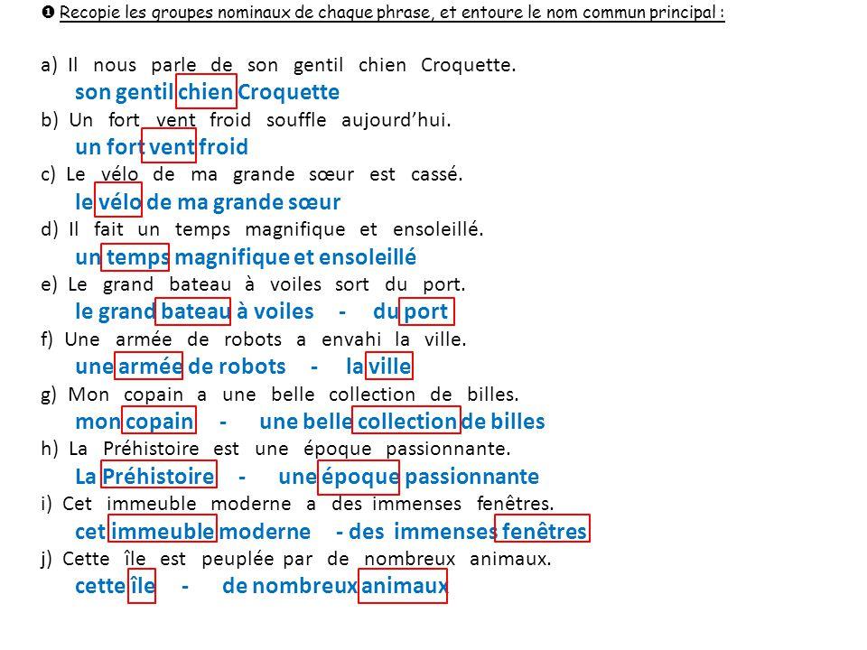  Recopie les groupes nominaux de chaque phrase, et entoure le nom commun principal : a) Il nous parle de son gentil chien Croquette. son gentil chien