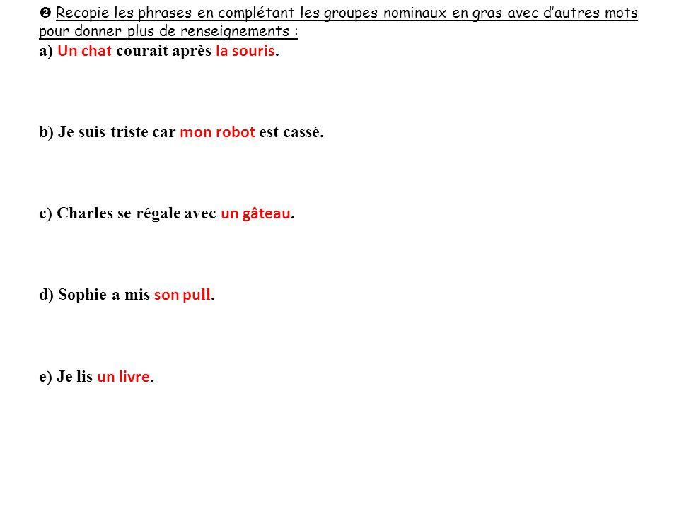 Recopie les phrases en complétant les groupes nominaux en gras avec d'autres mots pour donner plus de renseignements : a) Un cha t courait après la