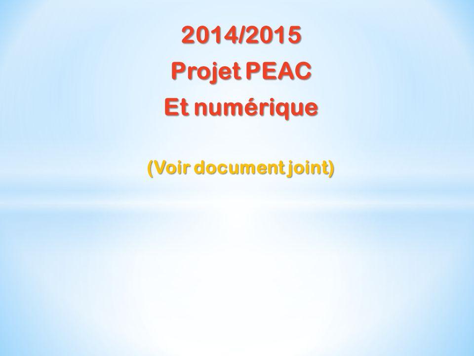 2014/2015 Projet PEAC Et numérique (Voir document joint)