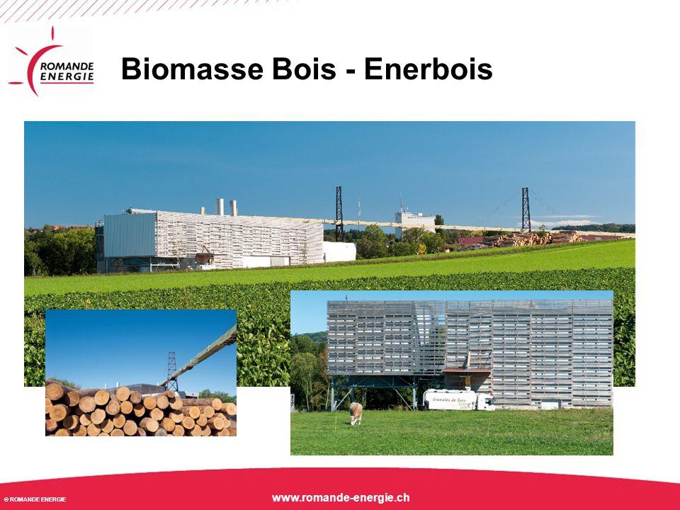 © ROMANDE ENERGIE www.romande-energie.ch Un réalisation d'écologie industrielle d'envergure nationale: Enerbois SA Biomasse Bois - Enerbois