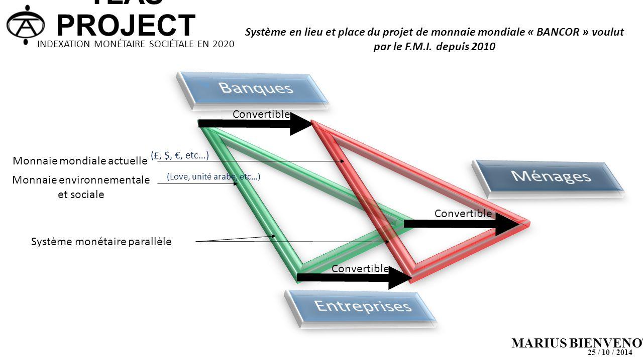 Convertible Monnaie mondiale actuelle (£, $, €, etc…) (Love, unité arabe, etc…) Monnaie environnementale et sociale Système monétaire parallèle Systèm