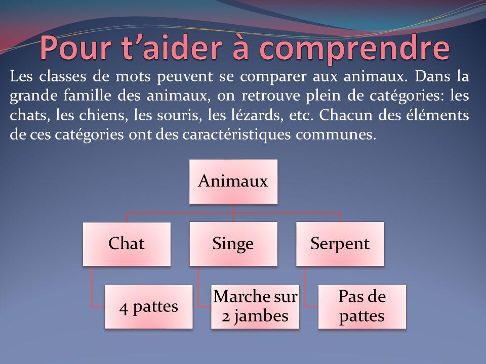 Les classes de mots peuvent se comparer aux animaux. Dans la grande famille des animaux, on retrouve plein de catégories: les chats, les chiens, les s