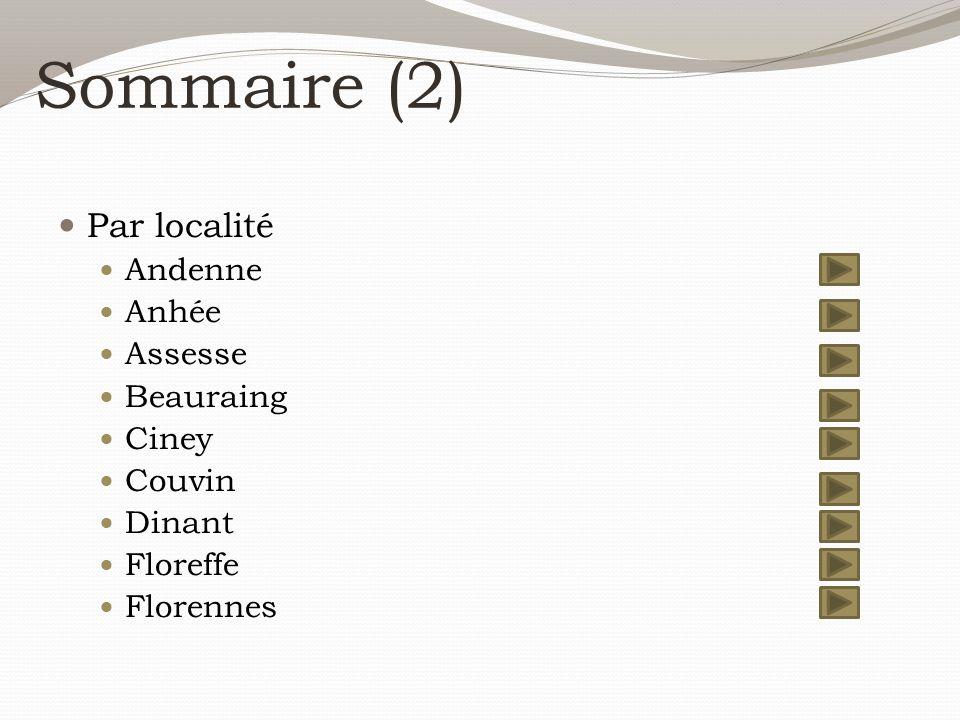 Sommaire (2) Par localité Andenne Anhée Assesse Beauraing Ciney Couvin Dinant Floreffe Florennes