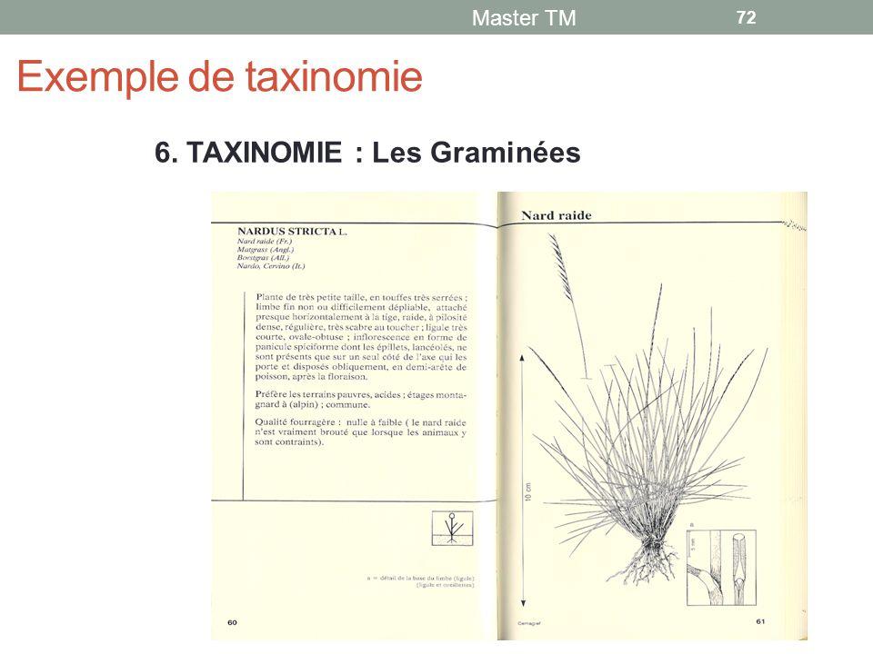 Exemple de taxinomie Master TM 72 6. TAXINOMIE : Les Graminées