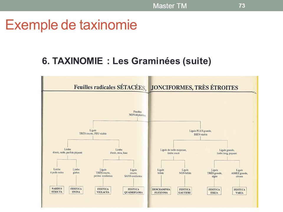 Exemple de taxinomie Master TM 73 6. TAXINOMIE : Les Graminées (suite)