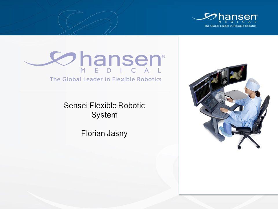 Sensei Flexible Robotic System Florian Jasny