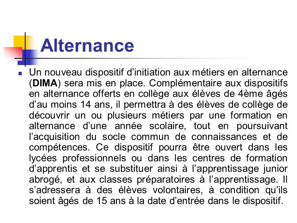 Alternance Un nouveau dispositif d'initiation aux métiers en alternance (DIMA) sera mis en place.