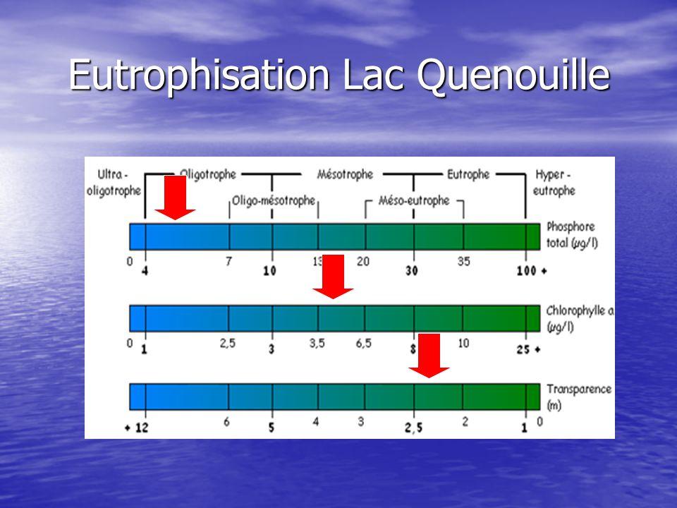 Eutrophisation Lac Quenouille