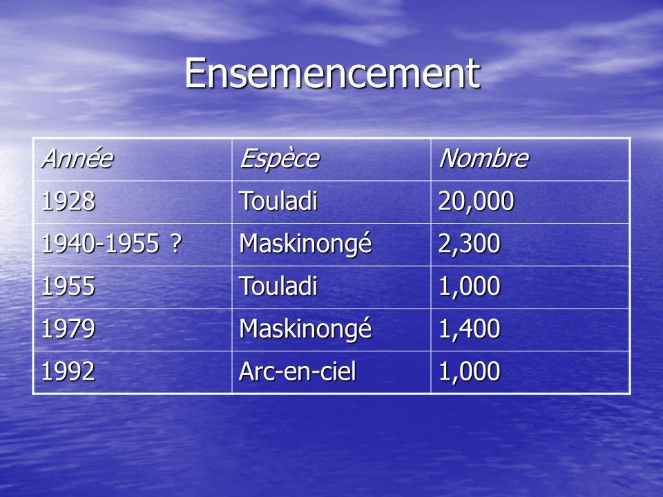 Ensemencement AnnéeEspèceNombre 1928Touladi20,000 1940-1955 ? Maskinongé2,300 1955Touladi1,000 1979Maskinongé1,400 1992Arc-en-ciel1,000