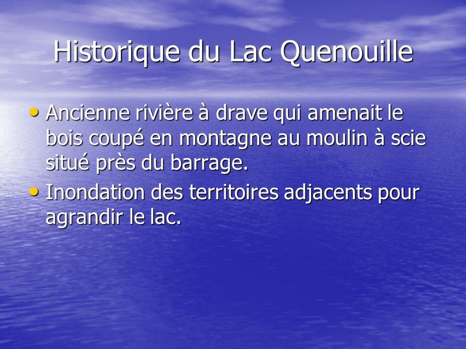 Historique du Lac Quenouille Ancienne rivière à drave qui amenait le bois coupé en montagne au moulin à scie situé près du barrage. Ancienne rivière à