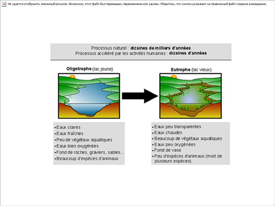 Niveau trophique On peut classer les lacs en trois grandes catégories trophiques, selon leur stade d'eutrophisation : La cs ri ch es e n m at iè re s