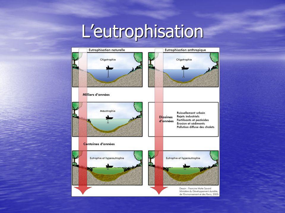 Niveau trophique Oligotrophe Lacs réduits en matières nutritives et contenant plusieurs espèces d'organismes aquatiques, chacune d'elles étant représentée en nombre relativement faible.