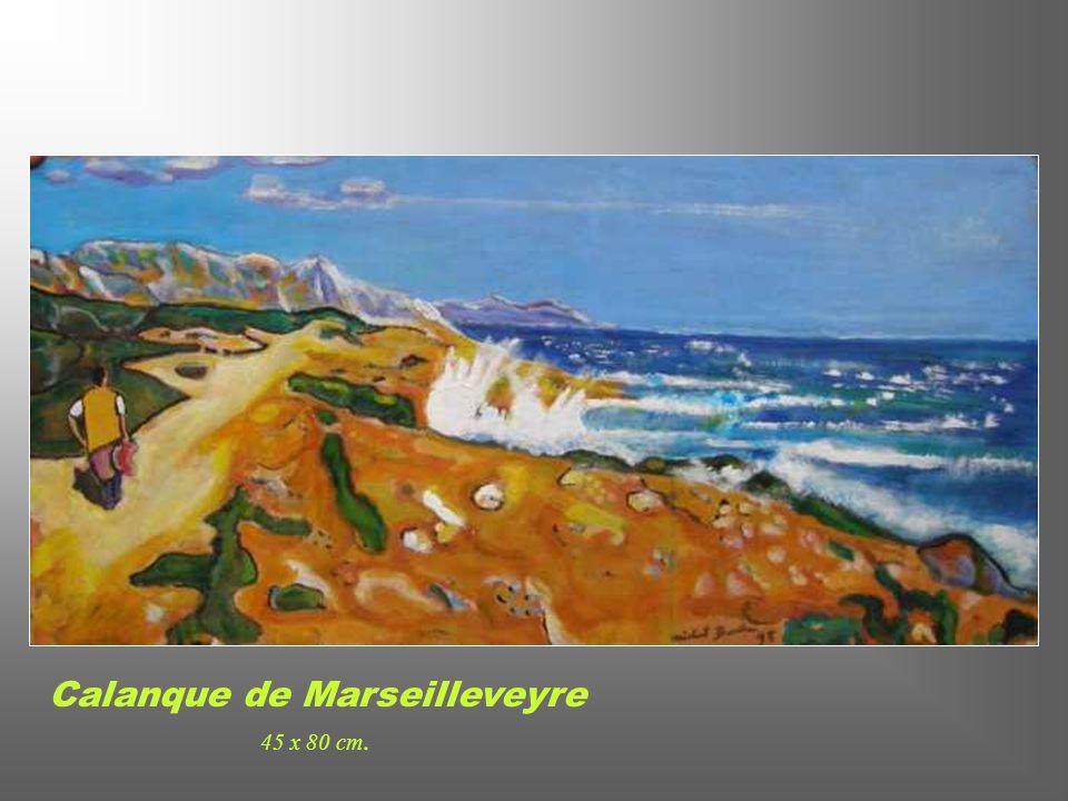 Calanque de Marseilleveyre 45 x 80 cm.