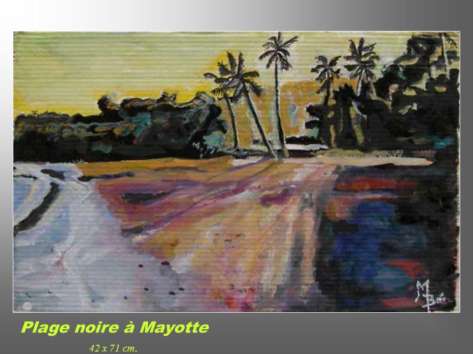 Plage noire à Mayotte 42 x 71 cm.