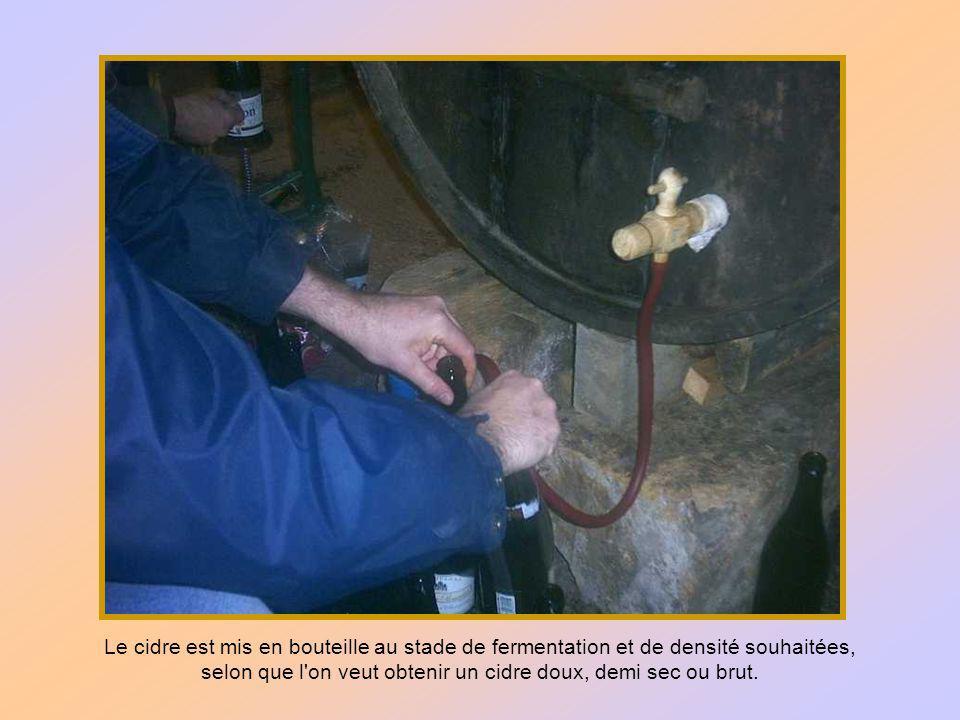 Huit à dix jours après sa mise en fût, le cidre s est clarifié et doit être transvasé dans un fût propre à l aide d un siphon.
