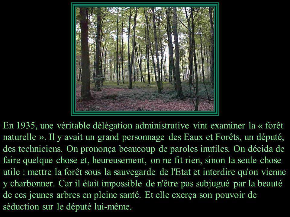 En 1933, il reçut la visite d un garde forestier éberlué.