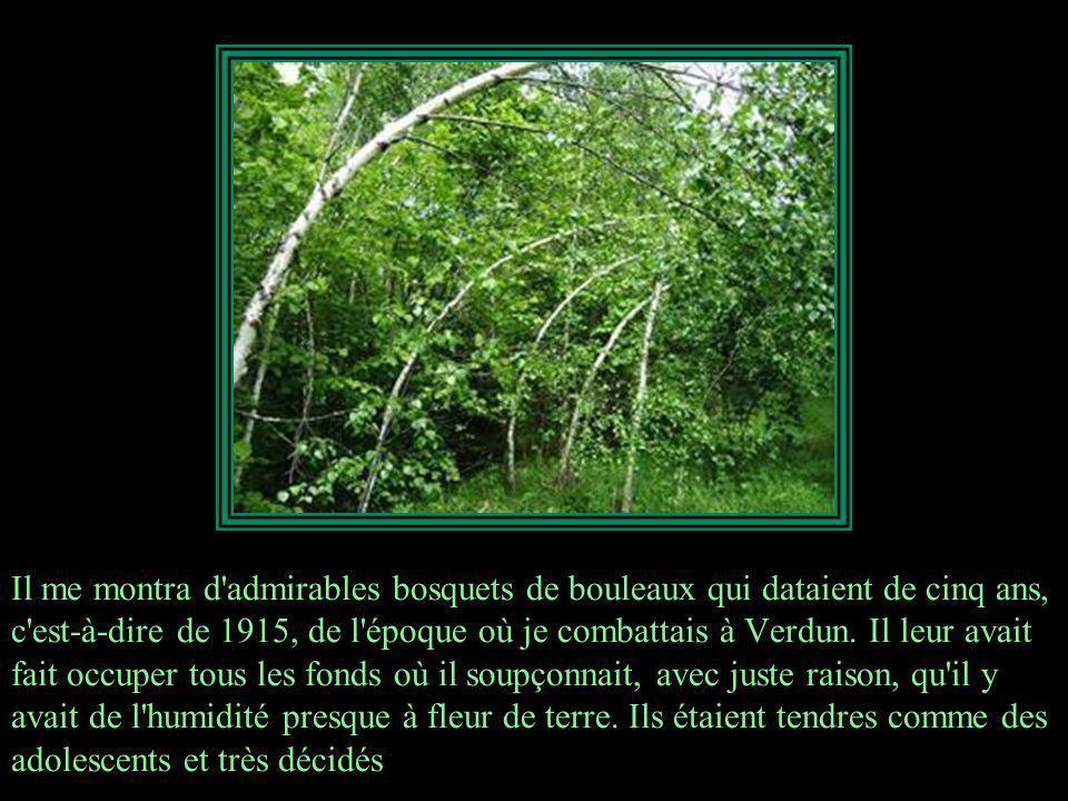 Les chênes étaient drus et avaient dépassé l âge où ils étaient à la merci des rongeurs; quant aux desseins de la Providence elle-même, pour détruire l œuvre créée, il lui faudrait avoir désormais recours aux cyclones.