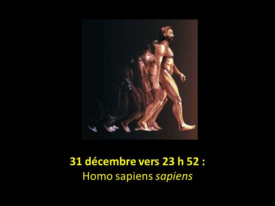 31 décembre vers 23 h 31 31 décembre vers 21 h