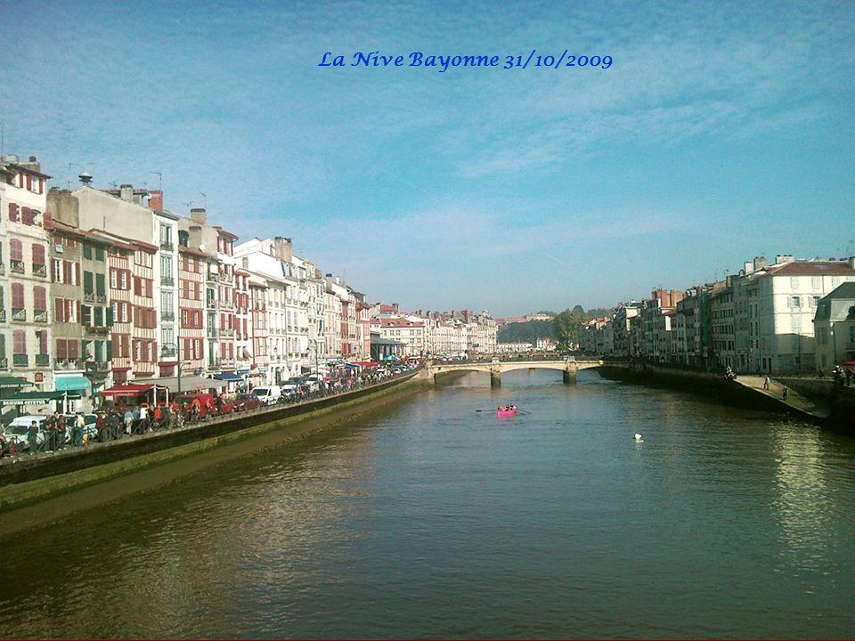 Traînière sur la Nive Bayonne
