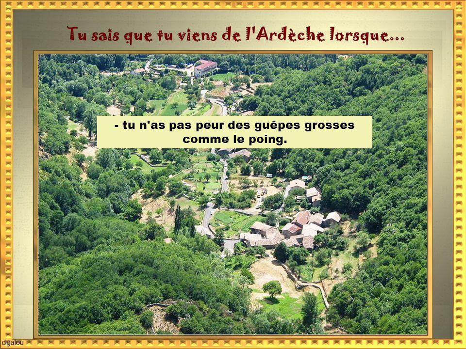 -tu milites pour l éradication -de la grotte de Lascaux au profit de la grotte Chauvet.