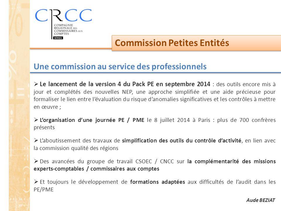 Commission Petites Entités Une commission au service des professionnels  Le lancement de la version 4 du Pack PE en septembre 2014 : des outils encor