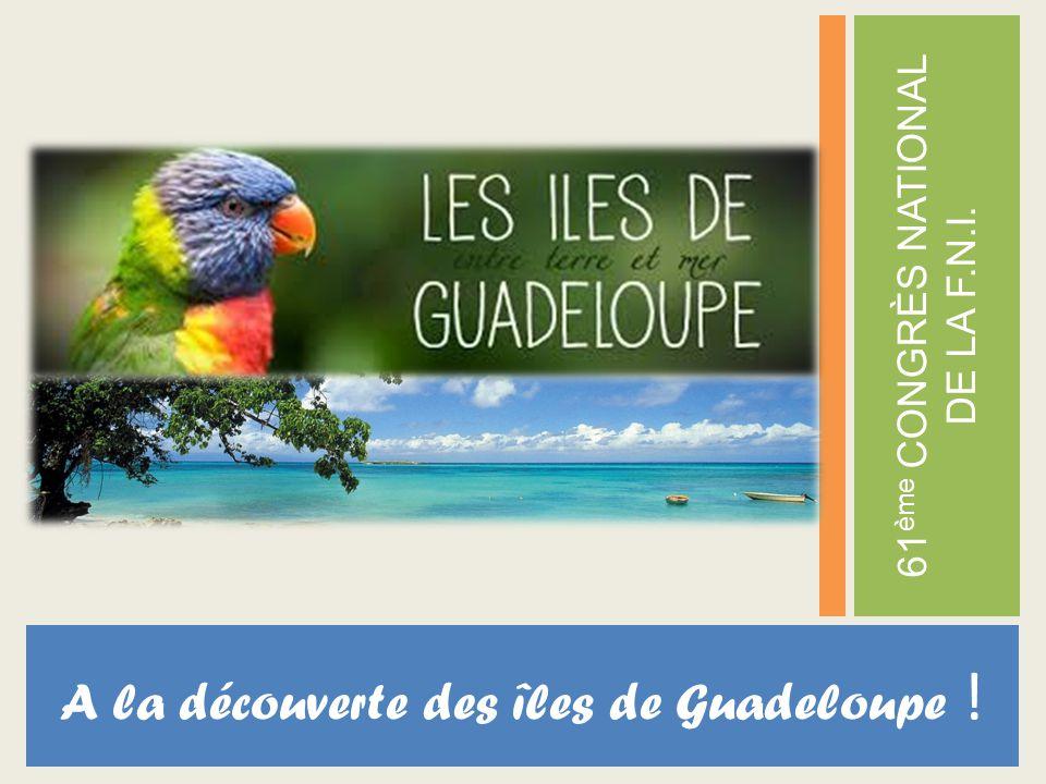 A la découverte des îles de Guadeloupe ! 61 ème CONGRÈS NATIONAL DE LA F.N.I.