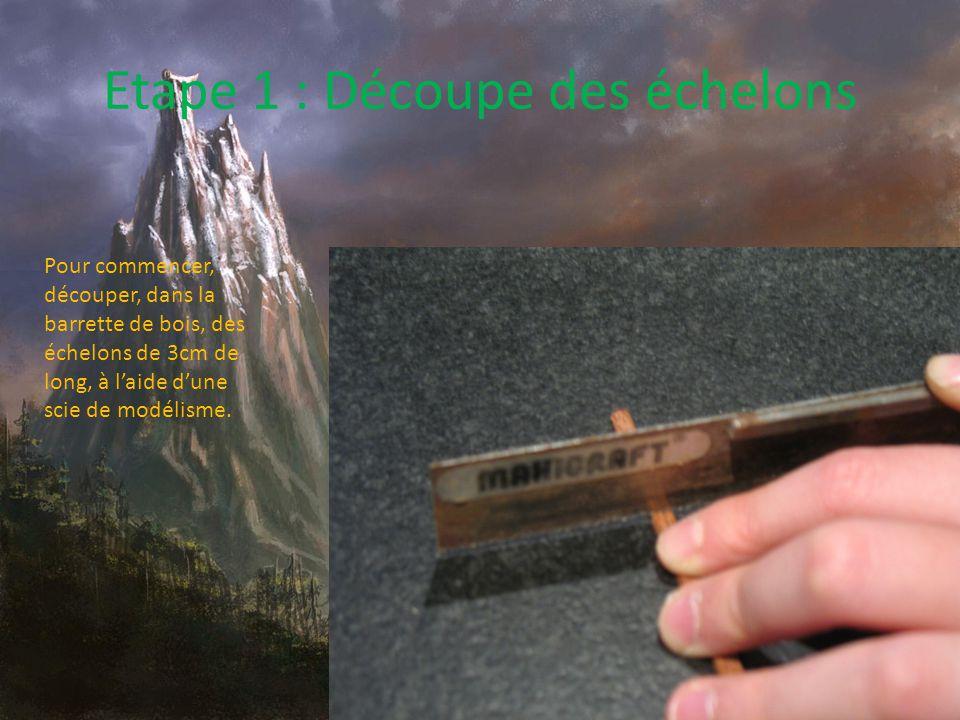 Echelle de corde Difficulté : Rendu : Matériel : -Scie de modélisme -Perceuse (électrique ou à mains) -Petit foret (entre2 et 4mm) -Morceau de bois rigide (éviter le balsa, ou l'échelle risque de casser) -Ficelle (pour un meilleur rendu, utiliser de la ficelle au couleurs plus naturelles)