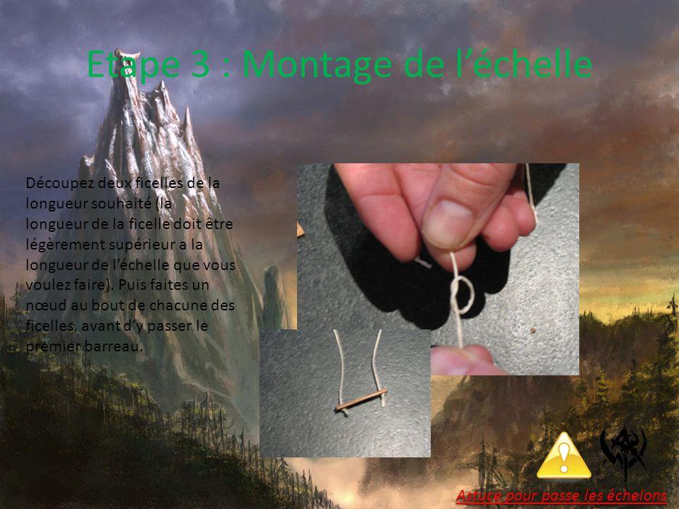 Etape 3 : Montage de l'échelle Découpez deux ficelles de la longueur souhaité (la longueur de la ficelle doit être légèrement supérieur a la longueur de l'échelle que vous voulez faire).