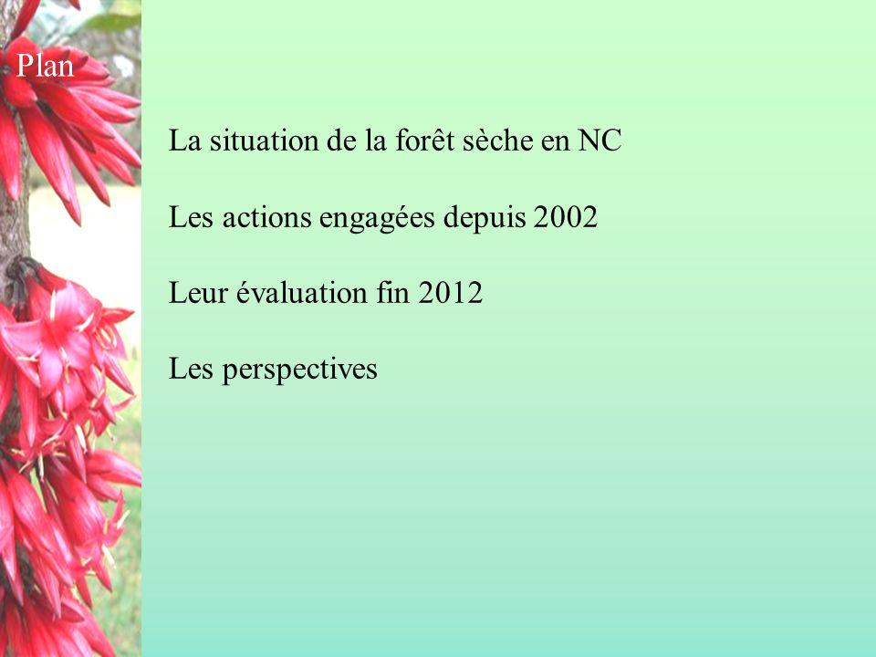La situation de la forêt sèche en NC Les actions engagées depuis 2002 Leur évaluation fin 2012 Les perspectives Plan